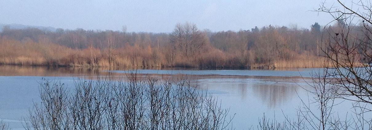 étang hiver